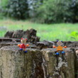 Stock Photo: Small animal on stump