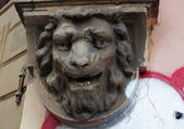 Decorative element, the head of a lion — Stock Photo