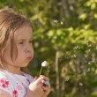 Stock Photo: Girl and dandelion