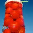 Fresh Tomato Juice? — Stock Photo