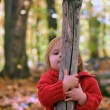 Stock Photo: Hide and seek in woods