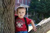 一棵树的男孩 — 图库照片