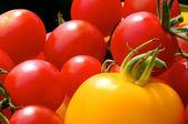 Tomates coloridos — Foto Stock