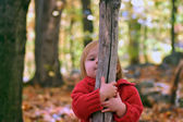 Hide and seek in the woods — Stock Photo