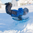 Winter fun - Boy sliding — Stock Photo