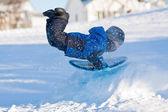 Winter fun - Boy sliding — Stock Photo