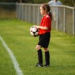 Young soccer player — Stock Photo #24438103