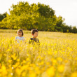 Brother and sister in a field — Stock Photo