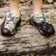 Stock Photo: Dirty shoes