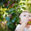 Stock Photo: Baby eating apple