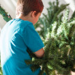 Boy building a Christmas tree — Stock Photo #35444491
