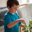 Boy building a Christmas tree — Stock Photo #35444469