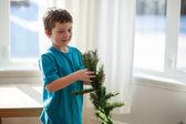 Boy building a Christmas tree — 图库照片