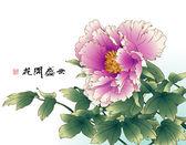Bläck målning av kinesisk pion. — Stockvektor