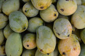 Mango fruit , thailand — Stock Photo