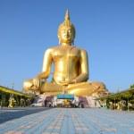 Big statue image of buddha at Wat muang, — Stock Photo #37374071