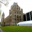Stock Photo: Natural History Museum London uk