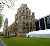 Natural History Museum London uk — Stock fotografie