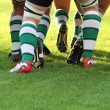 Stock Photo: Rugby