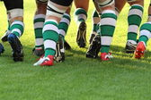 Rugbyman — Photo