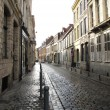 Foto de Stock  : Typical cobbled street Lille France