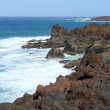 Stock Photo: Lanzarote coast