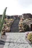 El Jardin del Cactus Lanzarote by Cesar Manrique — Stock Photo