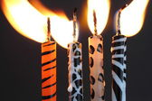 Animal print candles — Stockfoto