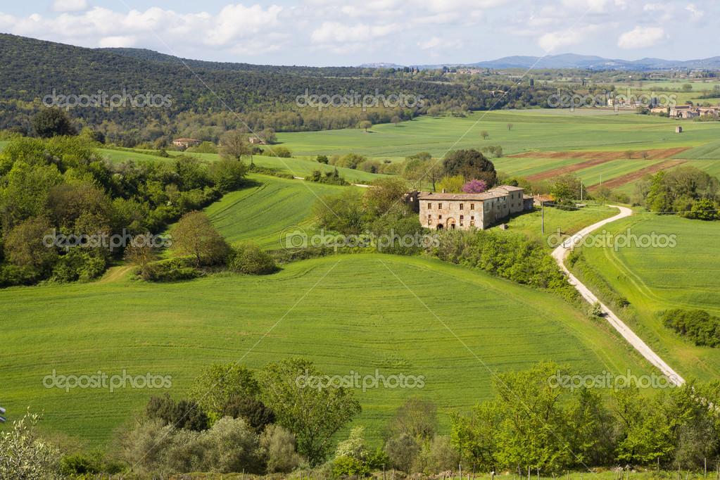 Una fattoria in collina foto stock nicobernieri73 for Piani di fattoria con veranda
