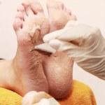 Feet — Stock Photo #24988943