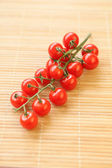 Savoureuses tomates — Photo