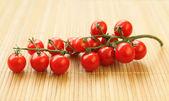 Little tomatoes — Stock Photo