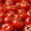 Tomatoes — Stock Photo #25494099