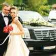 Wedding car — Stock Photo #25494901