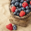 Stock Photo: Berries on jute