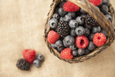 Ripe berries — Stock Photo