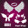 Angel Wings — Stock Vector