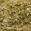 Foto de Stock  : Oregano