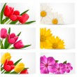 Big set of banners with spring and summer flowers. Vector illust - Stock Vector