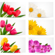 Big set of banners with spring and summer flowers. Vector illust — Stock Vector