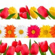 Spring flower borders. Vector. — Stock Vector