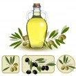 Bottle of oil with green olives and olive oil labels. Vector ill - Stock Vector