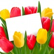 Royalty-Free Stock Vectorielle: Red and yellow tulips and blank of card.