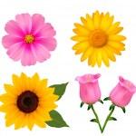 Big set of beautiful colorful flowers. Design flower set 2. Vect — Stock Vector #32619231
