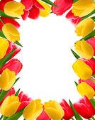 Fondo flor colorida primavera. ilustración vectorial. — Vector de stock