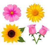 Big set of beautiful colorful flowers. Design flower set 2. Vect — Stock Vector