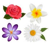 Big set of beautiful colorful flowers. Design flower set 3. Vect — Stock Vector