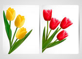Set of banners with colorful flower. Vector illustration. — ストックベクタ