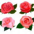 Stock Vector: Set of beautiful roses. Vector illustration.