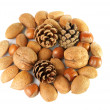 Christmas decoration with mixed nuts and pine cones — Stock Photo